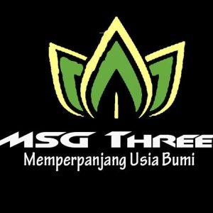 msg 3