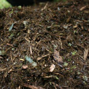Manfaat kompos untuk tanaman