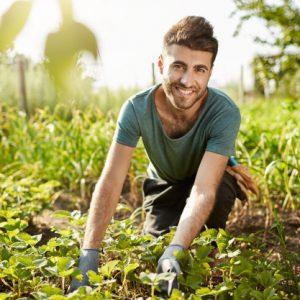 7 tips menjadi petani muda