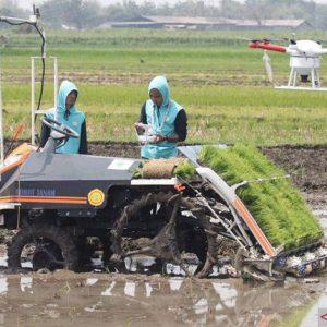 Memahami perkembangn pertanian modern