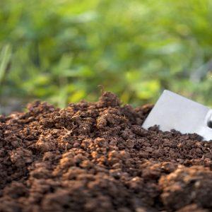 Jenis-tanah-untuk-pertanian-dan-perkebunan