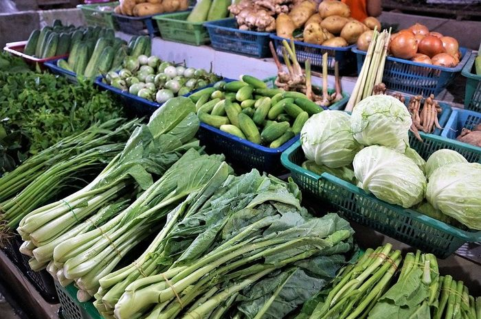 sejarah-sayuran-di-indonesia