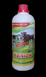 ranica
